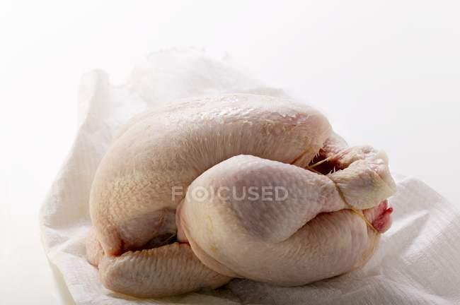 Fresh chicken on kitchen paper — Stock Photo