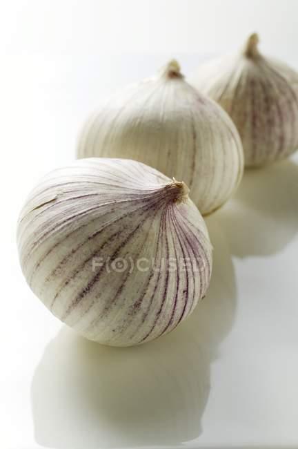 Малых чеснок из Азии — стоковое фото