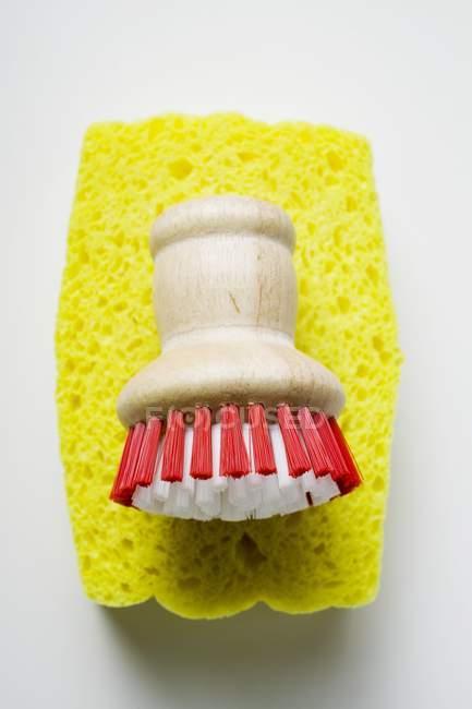 Closeup view of yellow sponge and brush — Stock Photo