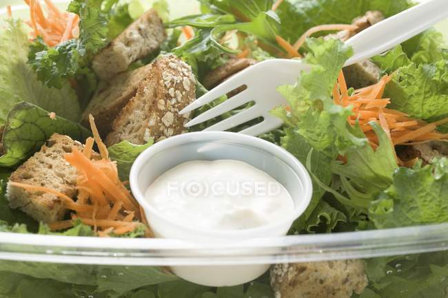 Salad leaves with carrots — Stock Photo