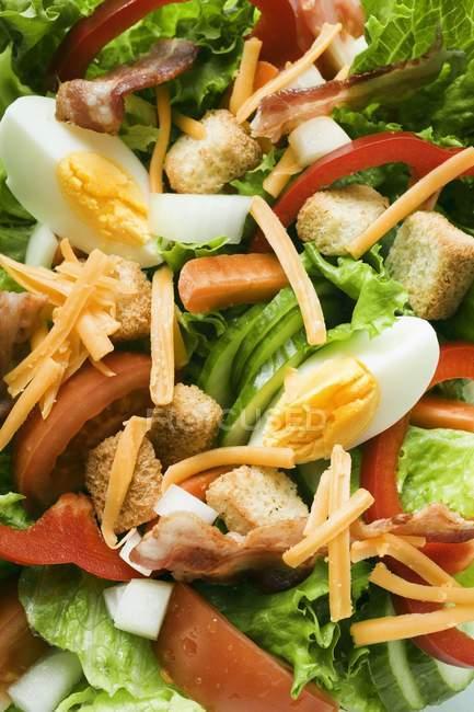 Foglie di insalata con verdure — Foto stock