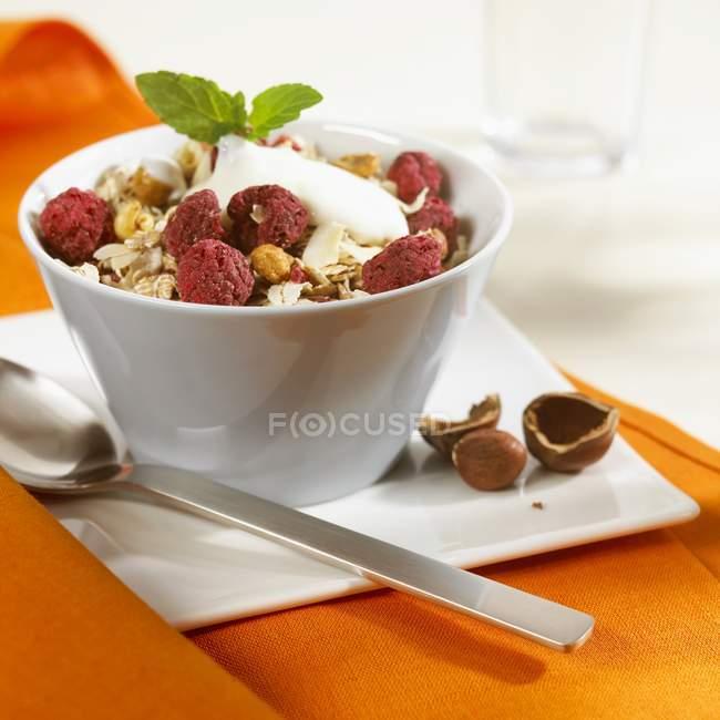 Мюслі з малиною і йогурту — стокове фото