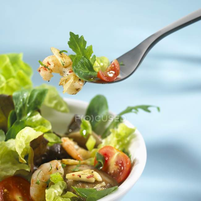 Salad leaves with shrimps — Stock Photo