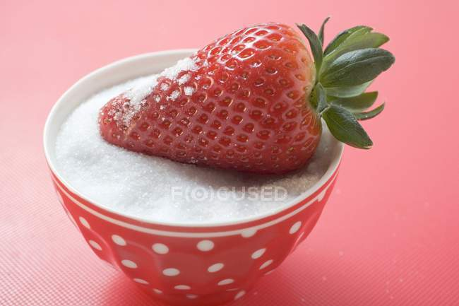 Strawberry in bowl of sugar — Stock Photo