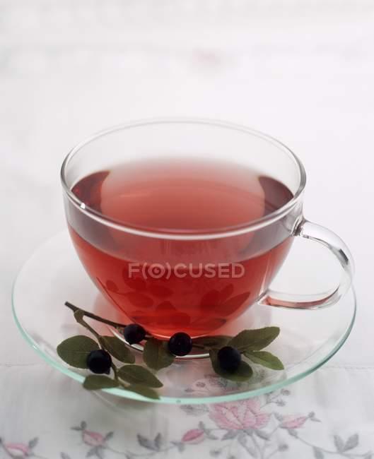 Tasse de thé aux bleuets — Photo de stock