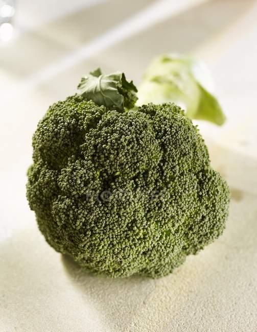 Frischer grüner Brokkoli — Stockfoto