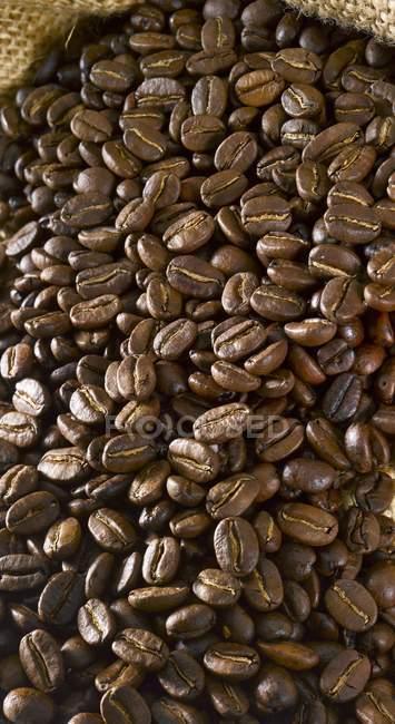 Кава в зернах в мішок — стокове фото