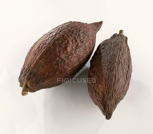Vainas de cacao crudo - foto de stock