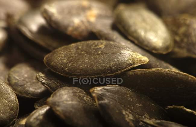 Semi di zucca nell'heap — Foto stock
