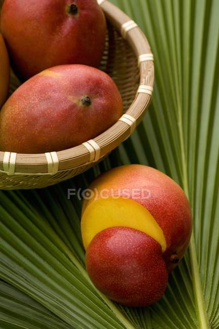 Fresh ripe mangos — Stock Photo