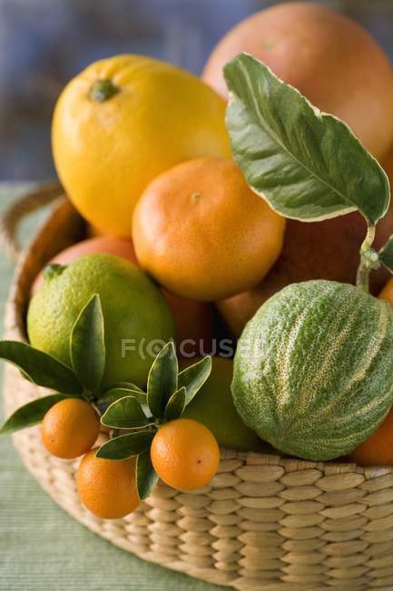 Basket of assorted citrus fruits — Stock Photo