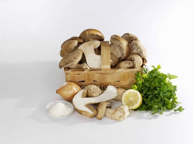 Still life with ceps — Stock Photo