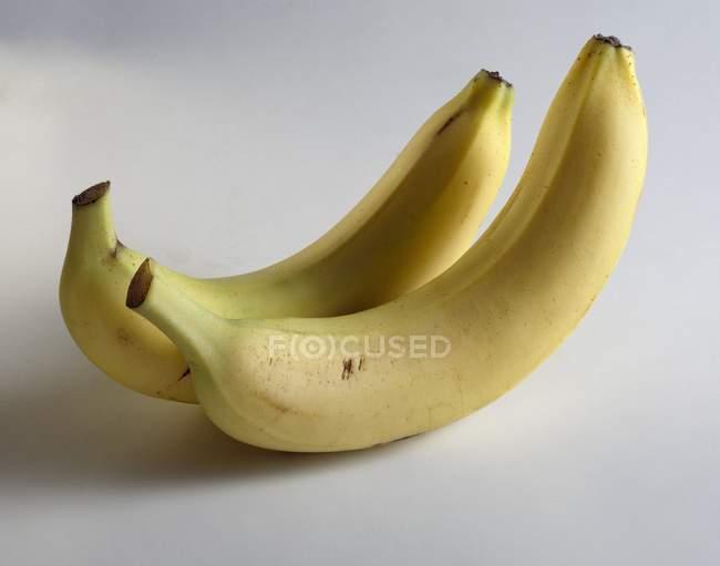 Дві жовті банани — стокове фото