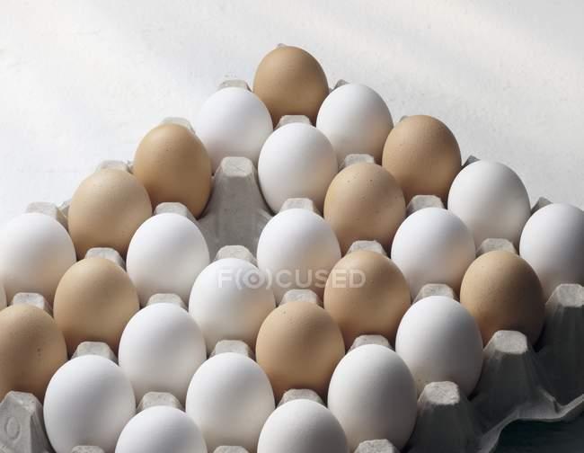Weiße und braune Eier — Stockfoto