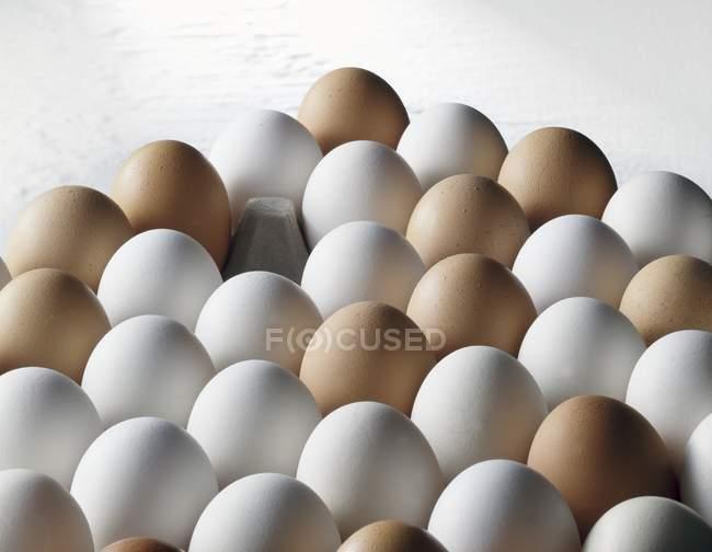 Для яиц на белом фоне — стоковое фото