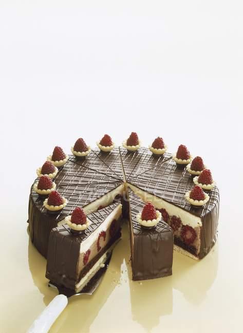 Pastel de chocolate frambuesa - foto de stock