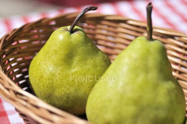 Two green pears — Stock Photo