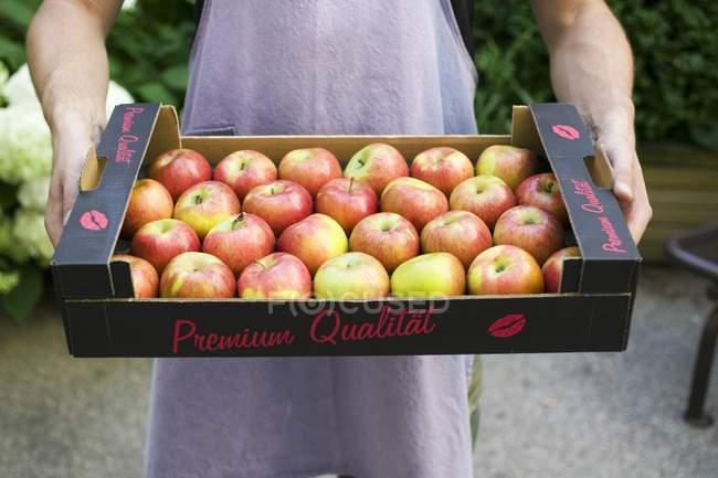 Man holding box of apples — Stock Photo