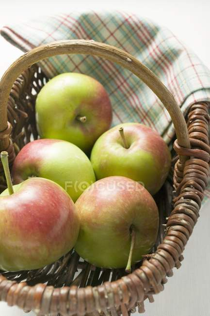 Five fresh apples — Stock Photo