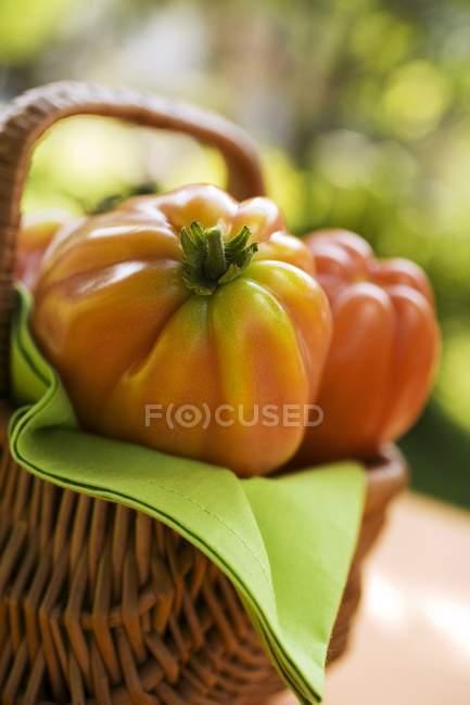 Свежие помидоры в корзине — стоковое фото