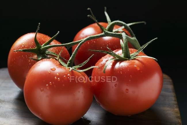 Чотири помідори на лозі — стокове фото