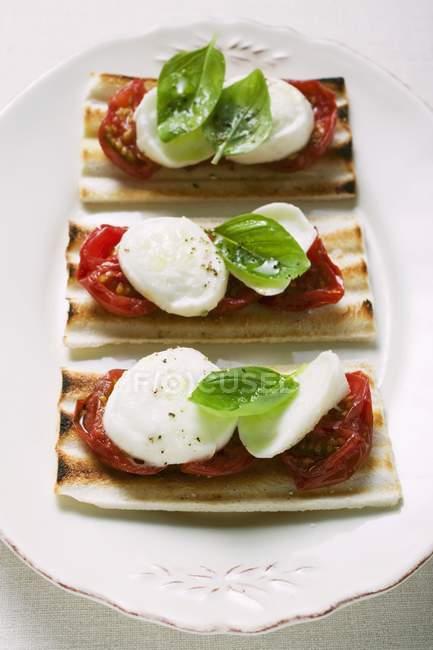 Toasts tomates et mozzarella au basilic — Photo de stock
