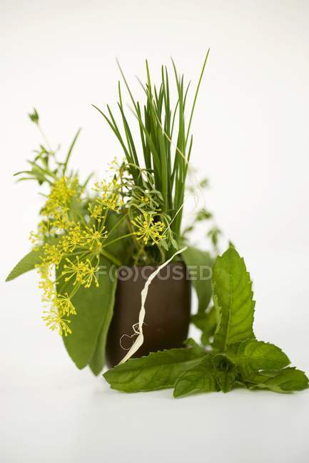 Bouquet d'herbes dans le bécher brun — Photo de stock