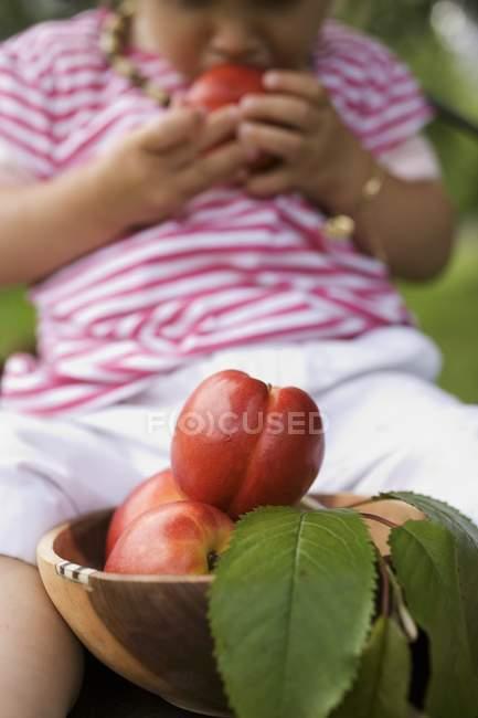 Niño comiendo nectarinas - foto de stock