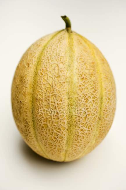 Melão melão fresco — Fotografia de Stock