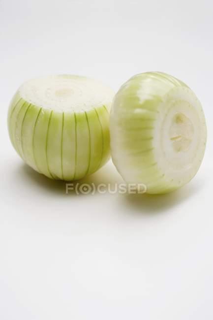 Cipolle bianche, primo piano — Foto stock