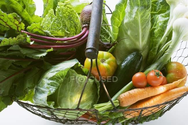 Свежие овощи в корзине — стоковое фото