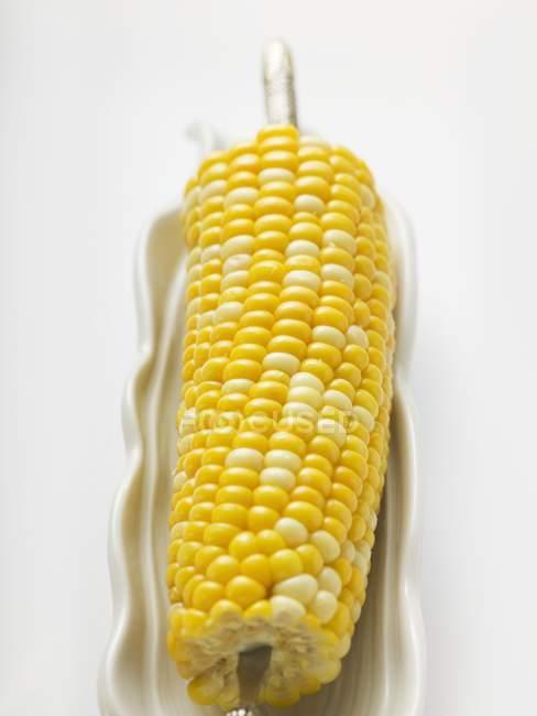 Corn on cob in white dish — Stock Photo