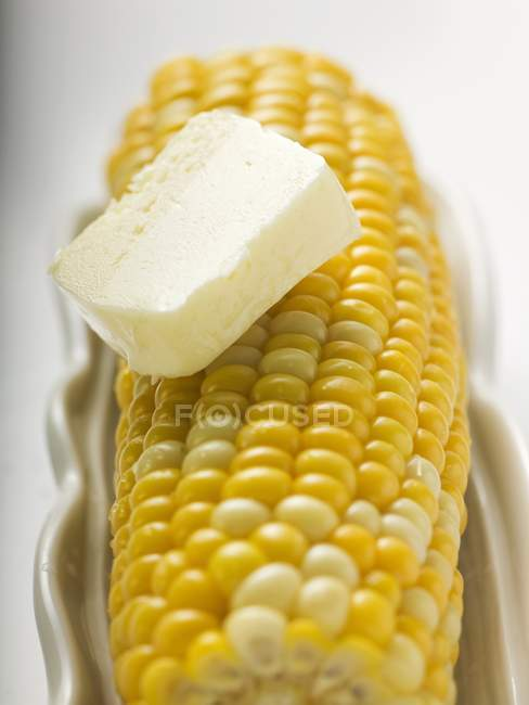 Corn on cob with knob of butter — Stock Photo