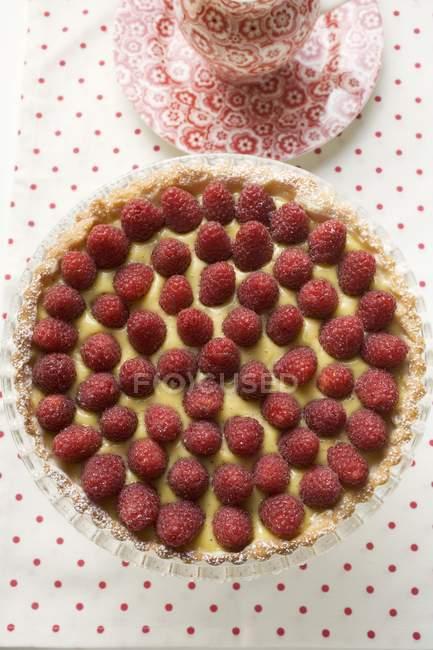 Raspberry tart with vanilla cream — Stock Photo