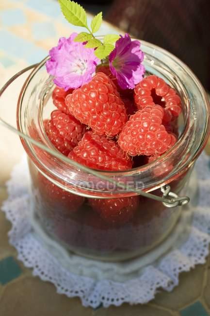 Свіжою малиною і пурпурні квіти — стокове фото