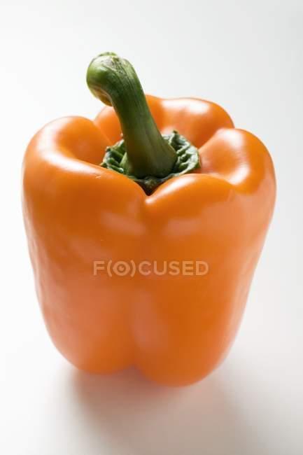 Pepe maturo all'arancia — Foto stock