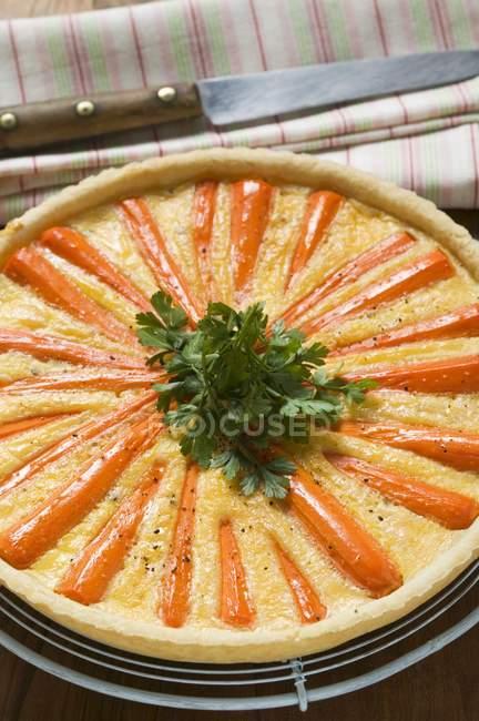 Torta di carota con prezzemolo — Foto stock
