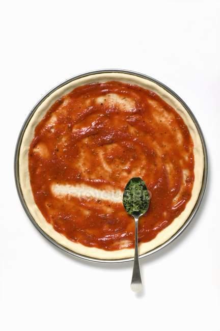 Піца бази з соусом — стокове фото