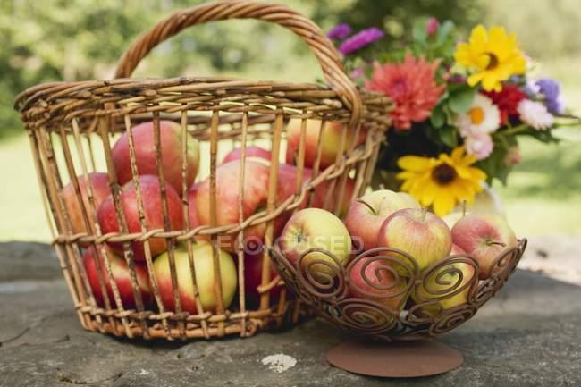 Fresh apples in basket — Stock Photo