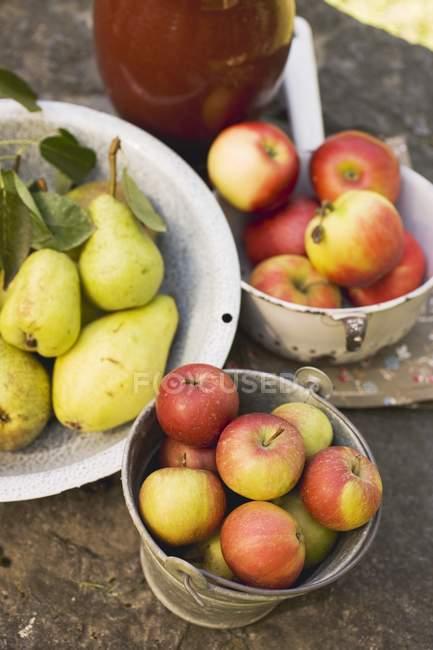 Свежие груши и яблоки — стоковое фото