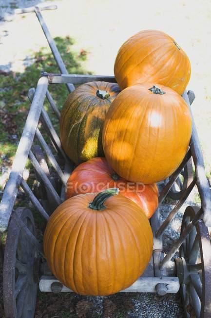 Помаранчевий гарбуза в дерев'яною візку — стокове фото