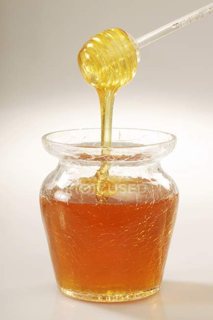 Honey drizzling off — Stock Photo
