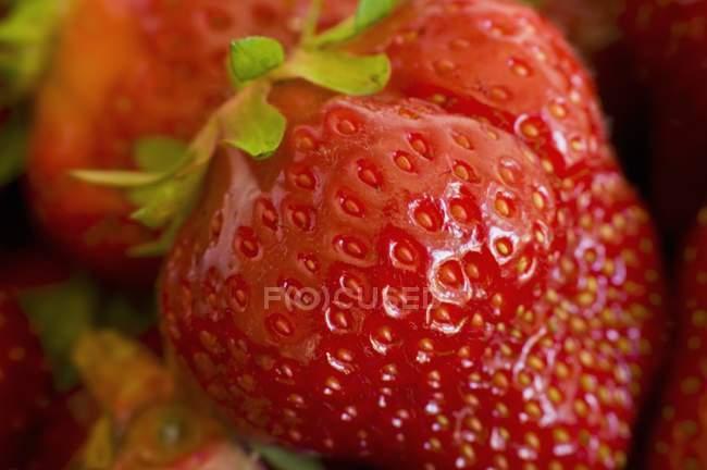 Fresh ripe strawberries — Stock Photo