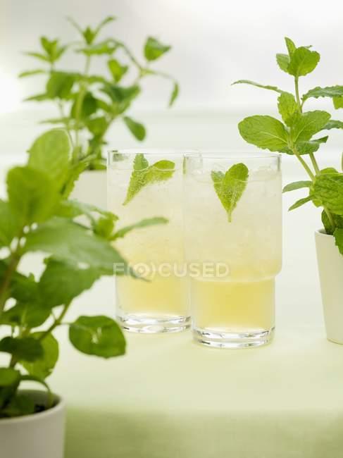 Detailansicht von Bourbon mit Minze, Sirup und Sodawasser — Stockfoto