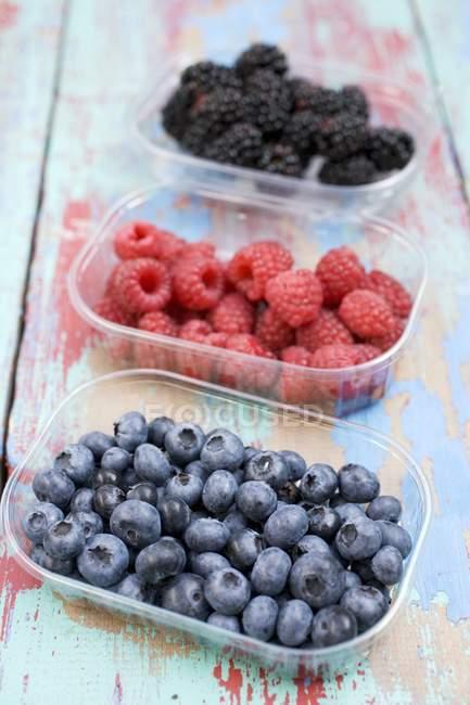 Bayas frescas maduras - foto de stock