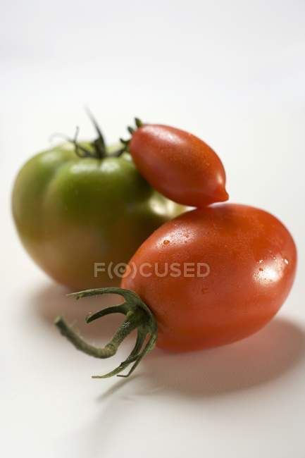 Three different tomatoes — Stock Photo