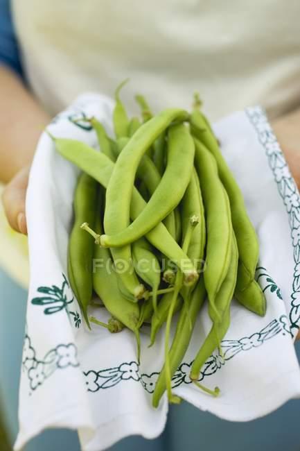 Les mains humaines tenant des haricots verts — Photo de stock