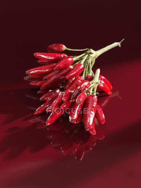 Rote Chilischoten — Stockfoto