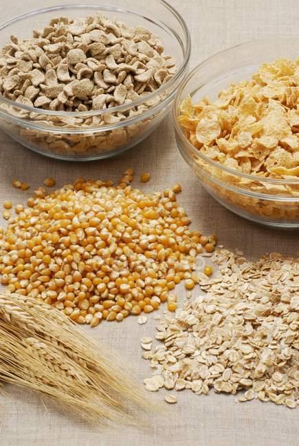 Corn flakes dans des bols de verre — Photo de stock