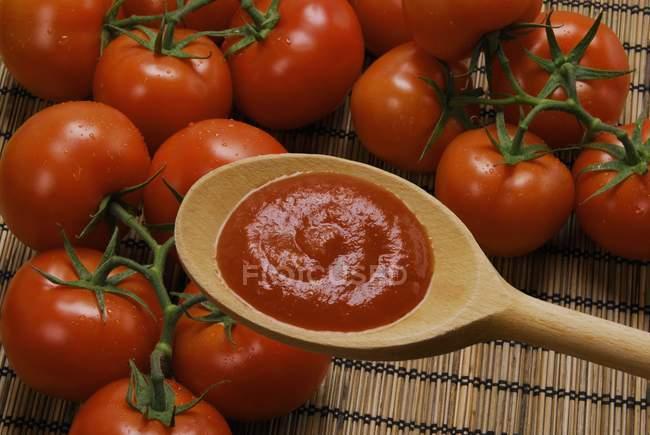 Домашній томатний соус на дерев'яною ложкою і свіжі помідори — стокове фото